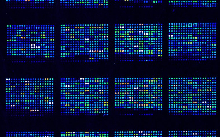 DNA microarrays are used in biological research to simultaneously measure the expression of thousand of genes