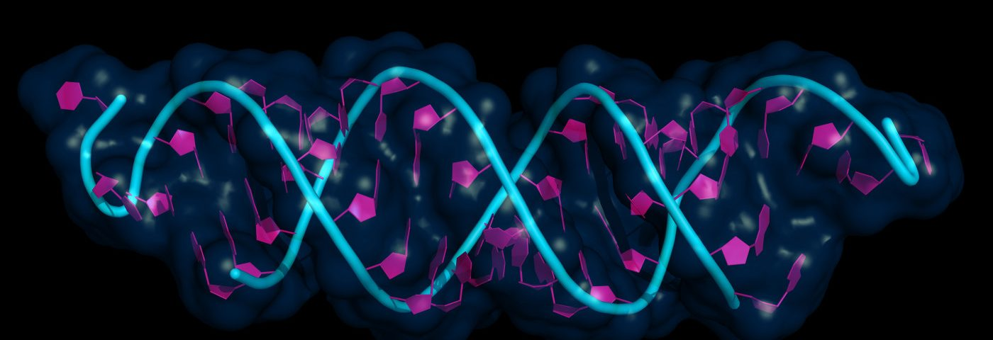 Scientists Create New Method to Calculate Number of SMN1 Copies and Identify SMA Carriers