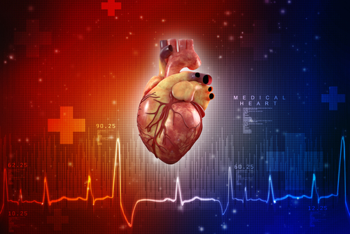 Heart Problems in SMA May Be Tied to Calcium Dysregulation, Study Suggests